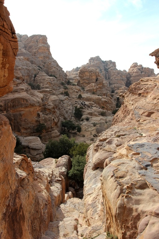 Лучший в мире вид по мнению местных бедуинов