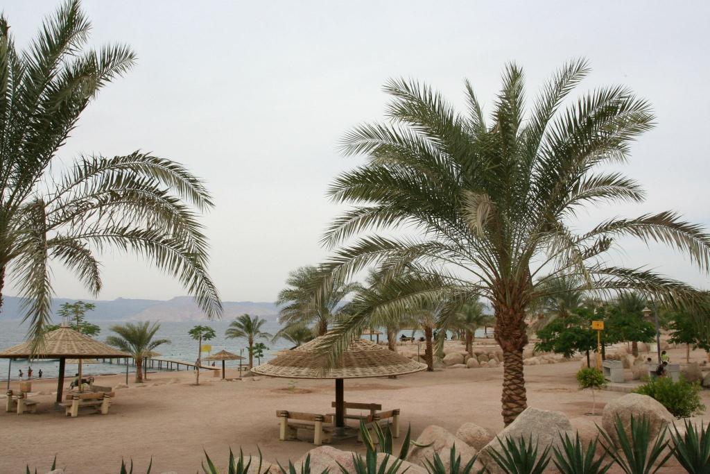 Бесплатный пляж возле Акабы, Иордания